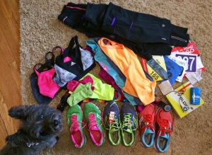 This giant pile of neon represents the clothes, gear and whatnot I've purchased this year for marathon training (*dog not included).